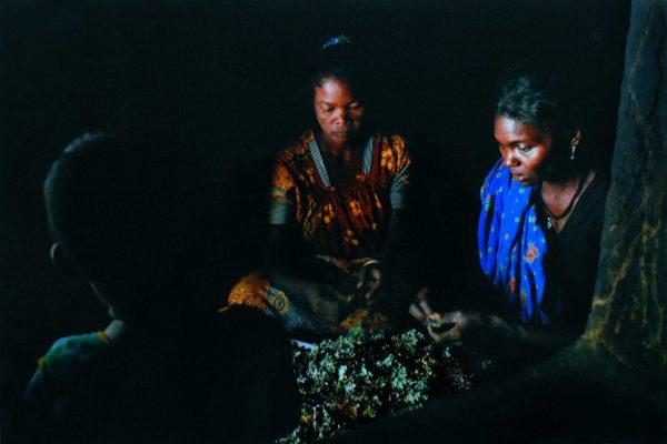 Consolation---'Lichens'--Prasanth-Pattan,-Thalassery